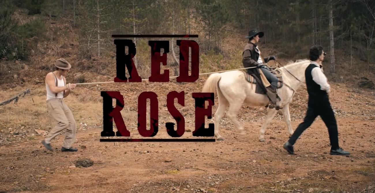 red rose diapo2